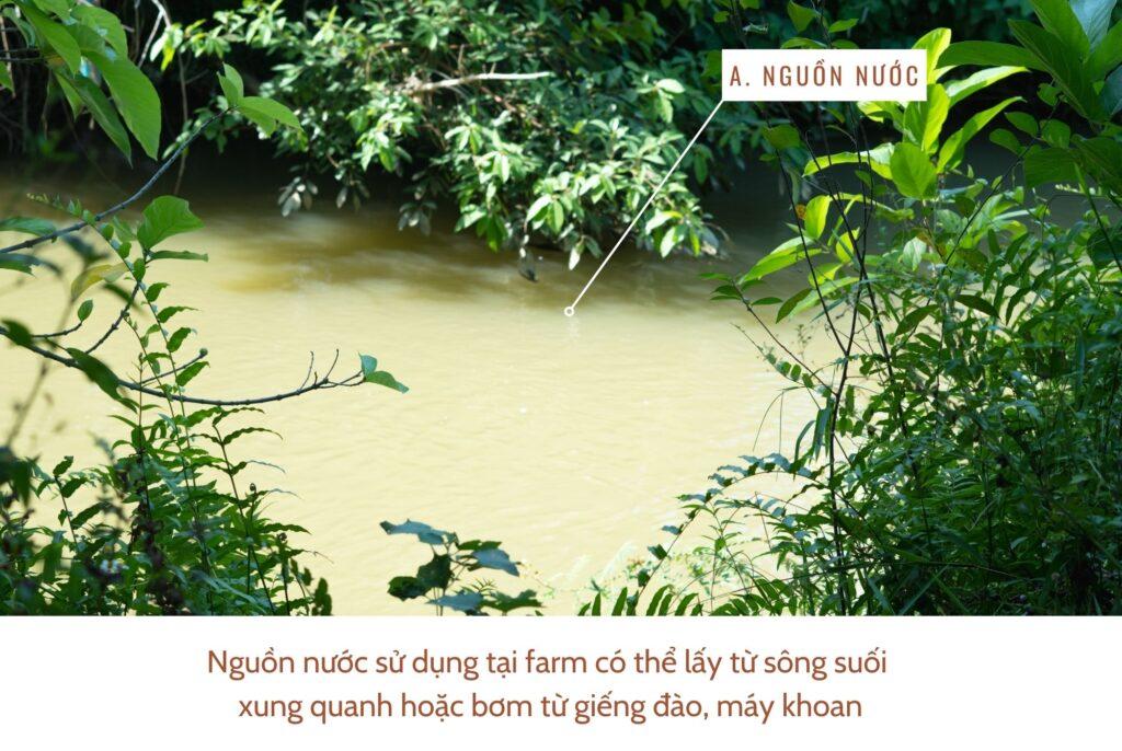 nguon-nuoc-trong-he-thong-tuoi-tieu